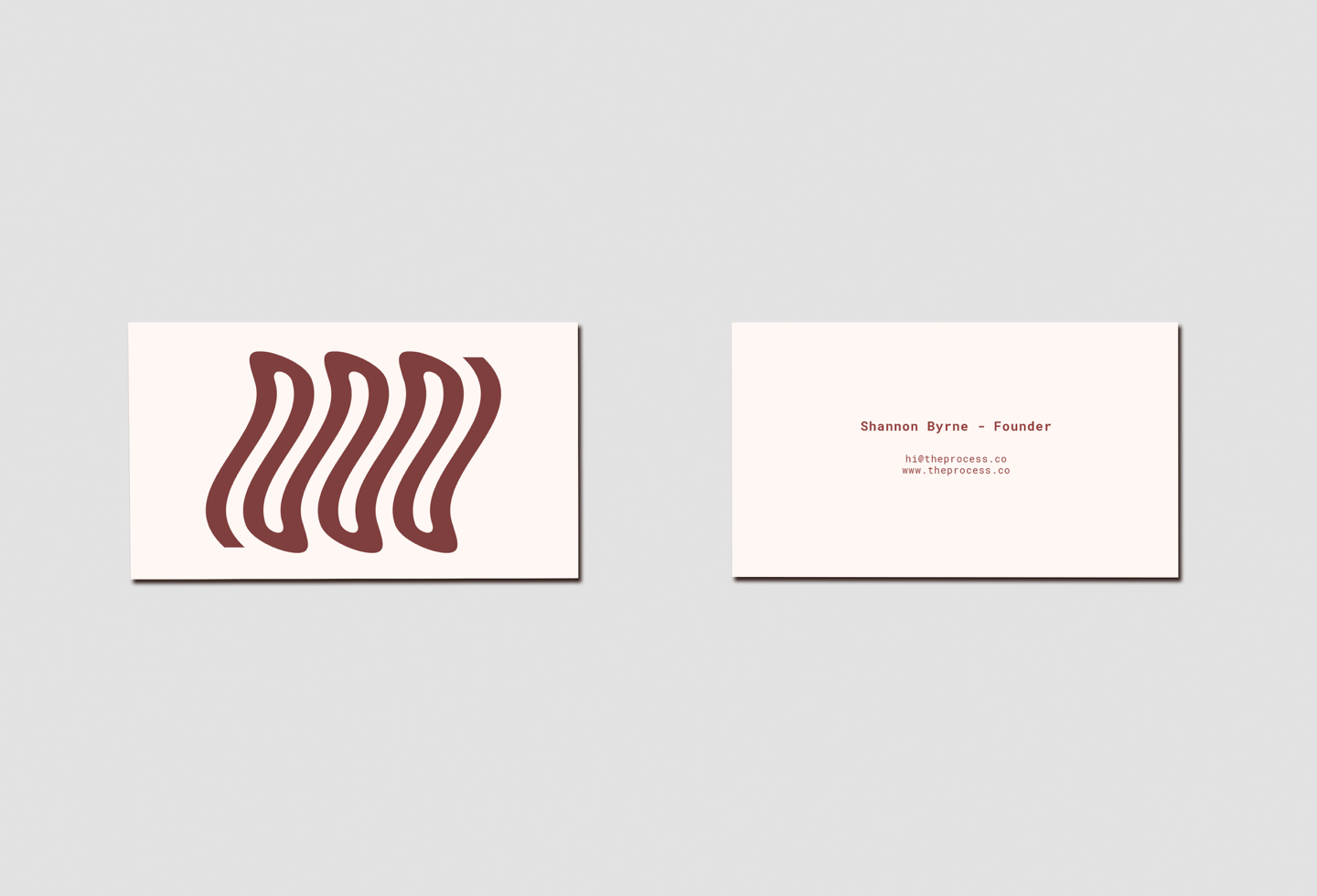 theprocess-businesscards